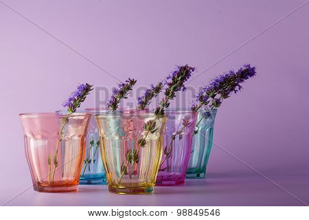 Many Different Color Glasses