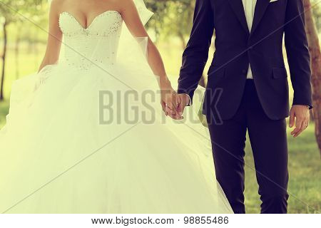 Beautiful Wedding Theme, Holding Hands Newlyweds