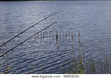 Lure and rods