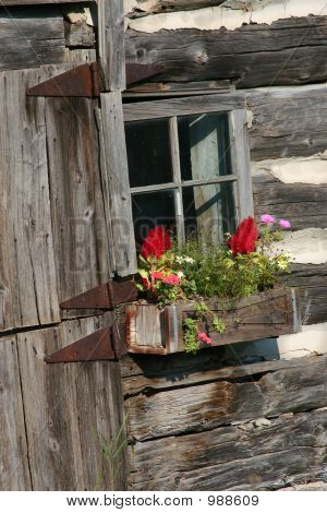Old Flower Box