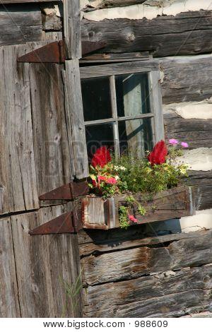 Old Flower Box