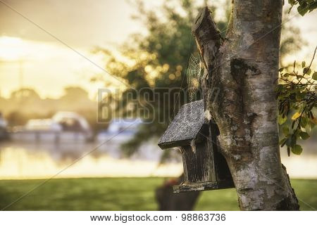 Beautiful Sunrise Over Foggy River With Close Up Of Birdhouse And Tree