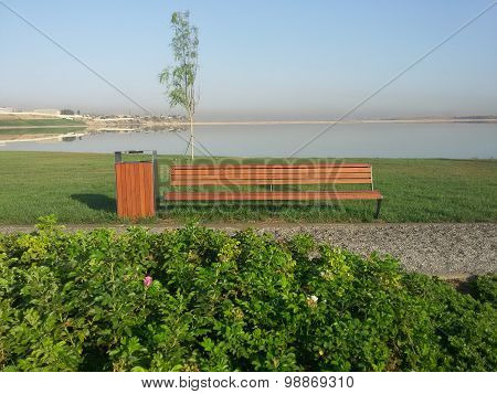 Park bench in nature