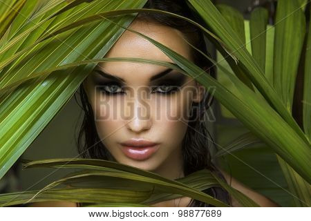 Makeup. Sexy Beautiful Woman Hiding Behind The Palm Leaves. Beautiful Stylish Woman With Smokey Eyes