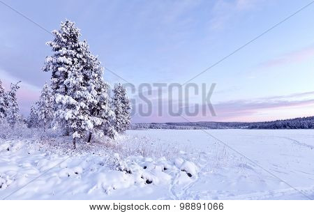 Snowy landscape and vast forests.