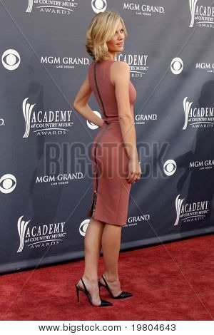 LAS VEGAS - APR 3:  Brooklyn Decker arrives at the Academy of Country Music Awards 2011 at MGM Grand Garden Arena on April 3, 2010 in Las Vegas, NV.