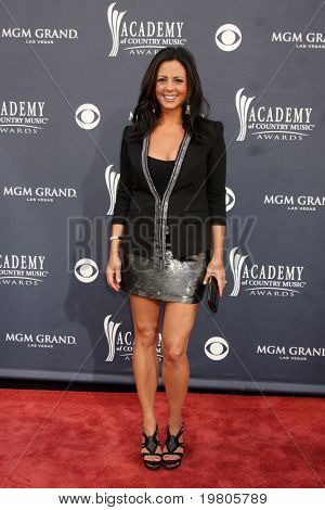 LAS VEGAS - APR 3:  Sara Evans arriving at the Academy of Country Music Awards 2011 at MGM Grand Garden Arena on April 3, 2011 in Las Vegas, NV.