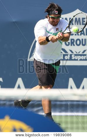 LOS ANGELES, CA. - JULY 31: Janko Tipsarevic of Serbia (pictured) and Sam Querrey of USA play a match at the 2010 Farmers Classic on July 31 2010 in Los Angeles.