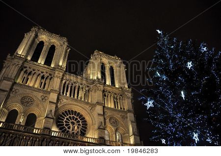 Christmas decoration at Notre dame de Paris
