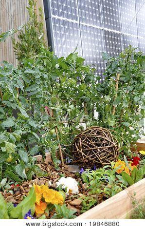 Garden and solar panel