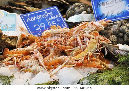 Langoustines on a market stall