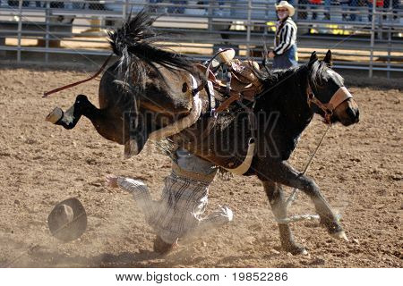 APACHE JUNCTION, AZ - FEBRUARY 28: A competitor is thrown from a bucking horse in the saddle bronc competition at the Lost Dutchman Days Rodeo on February 28, 2009 in Apache Junction, AZ.