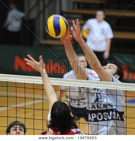 KAPOSVAR, HUNGARY - JANUARY 22: Vojislav Skoric (R) blocks the ball at a Middle European League volleyball game Kaposvar (HUN) vs. HotVolleys Wien (AUT), January 22, 2010 in Kaposvar, Hungary.