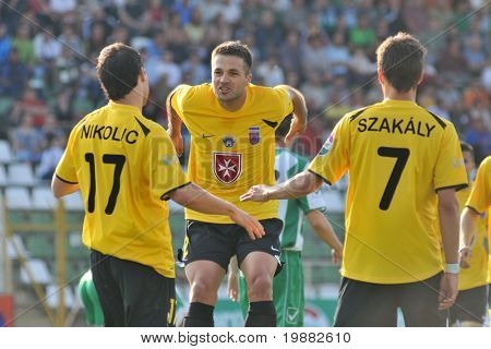 KAPOSVAR, HUNGARY - MAY 1: Videoton players celebrate a goal at a Hungarian National Championship soccer game Kaposvar vs. Videoton May 1, 2010 in Kaposvar, Hungary.