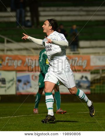 KAPOSVAR, HUNGARY - NOVEMBER 19: Lorant Olah (in white) celebrates his goal at a Hungarian National Championship soccer game Kaposvar vs Gyori ETO November 19, 2010 in Kaposvar, Hungary.