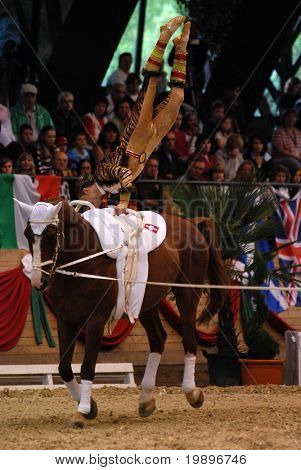 KAPOSVAR, HUNGARY - AUGUST 12: Dimitri Suhner (SUI) in action at the Vaulting World Championship Final on August 12, 2007 in Kaposvar, Hungary.