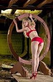 beautiful blond lingerie model