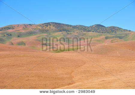 Temblor Mountain Range