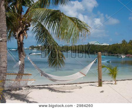 Hameck On Beach
