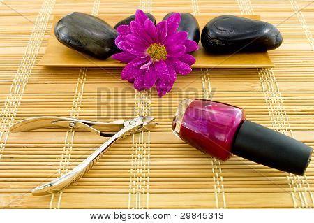Spa Manicure Scene