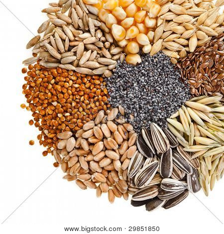 Round of Cereal Grains, Seeds, Rye, Wheat, Barley, Oat, Sunflower, Corn, Flax, Poppy, on white  background