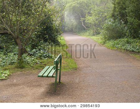 Park Bench on Misty Morning