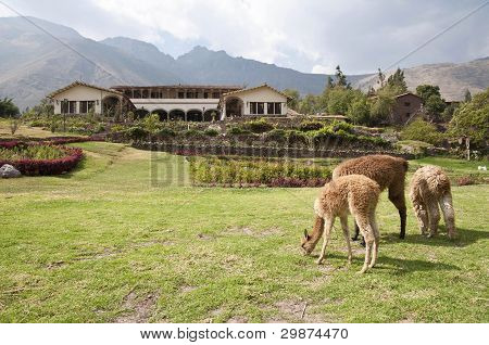Hacienda in the Sacred Valley of the Incas, Peru
