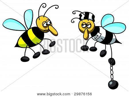 bee prisoner