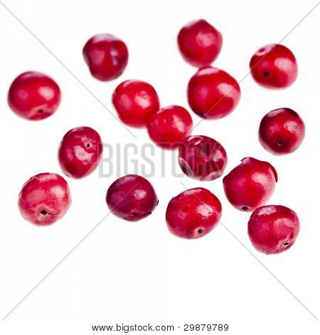 pink peppercorn close up , on white background.