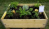 Container To Make A Vegetable Garden On Your Balcony Or Terrace. On The Label Are Shown The Followin poster