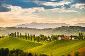 South Styria Vineyards Landscape, Near Gamlitz, Austria, Eckberg, Europe. Grape Hills View From Wine poster