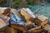 Stacks Of Firewood. Preparation Of Firewood For The Winter. Pile Of Firewood.firewood Background, Ko poster