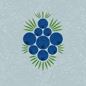 Juniper Berries Illustration. Juniper Berries With Leaves On Shabby Background. Original Simple Flat poster