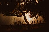 Relaxation On The Beach, Amazing Sunset, Sunset Near The Water, Sunset Throw The Trees People Near T poster