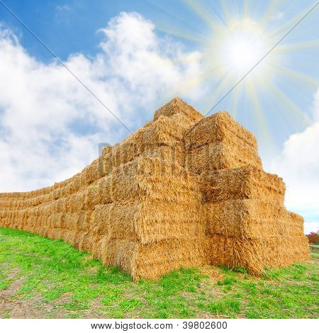 Harvested haystack. Biomass - renewable energy concept.