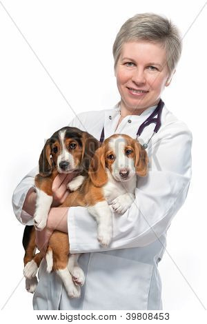 Vet Holding A Couple Of Cute Puppies