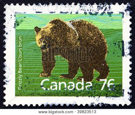 CANADA - CIRCA 1989: a stamp printed in the Canada shows Grizzly Bear, Ursus Arctos Horribilis, Animal, circa 1989