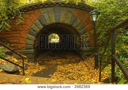 Bridge-Foot Bridge