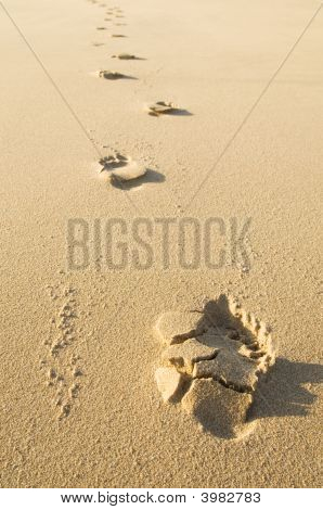 Foot Prints On Sand