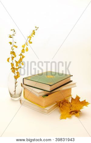 Books With Autumn Leaves
