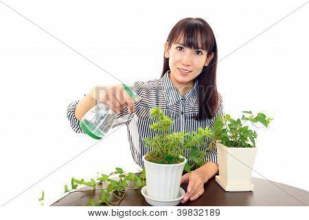 The woman who enjoys gardening