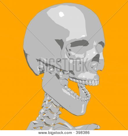 Skull 22