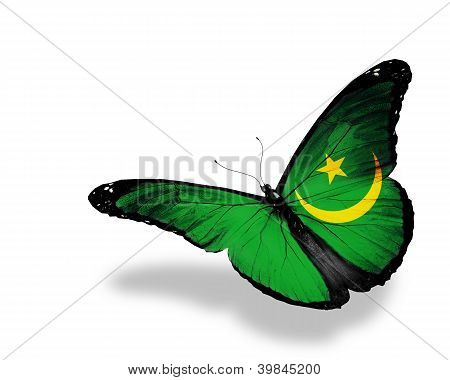 Mauritanian Flag Butterfly Flying, Isolated On White Background