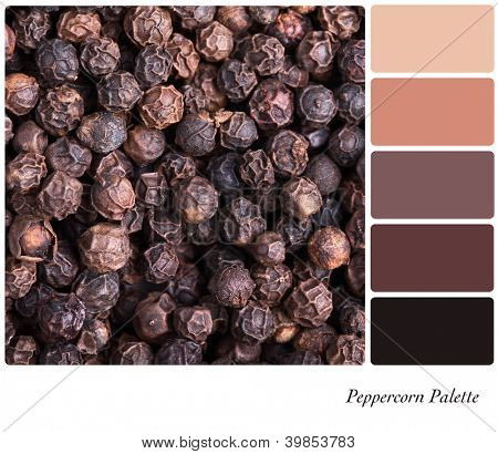 A background of black peppercorns palette with complimentary colour swatches