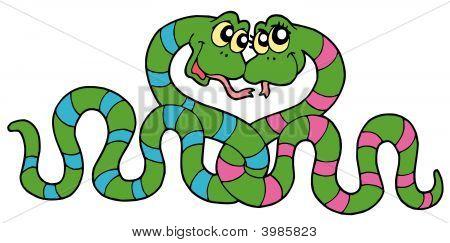 Pair_Of_Snakes_In_Love