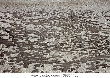 Tar Stains On Gray Asphalt