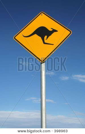 Watch Out For Roos