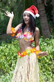 stock photo of hula dancer  - hawaii hula dancer posing on the beach - JPG