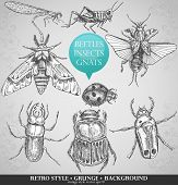 stock photo of hoppers  - vector set insects in vintage style - JPG