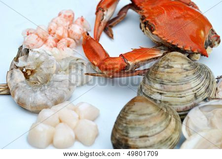Fresh Seafood On A Plate Being Prepared To Cook